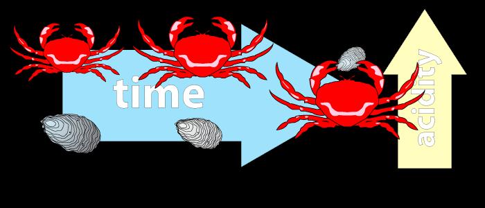 Crustacean Populations
