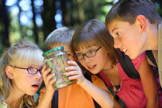 bigstock-Children-looking-at-bug-in-jar-14086556.jpg